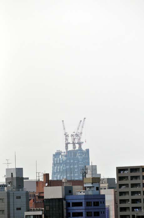 DSC_1914 skytree01.jpg
