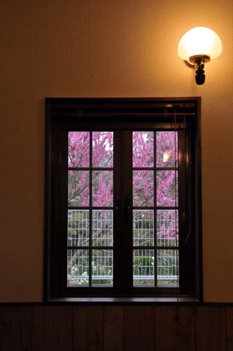 DSC_4606 の東側の窓。.jpg